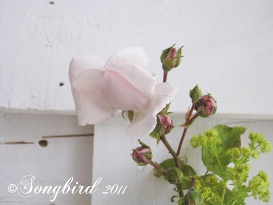Summer Mantel with Roses 3