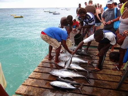 18. Pescari in Capul Verde.JPG