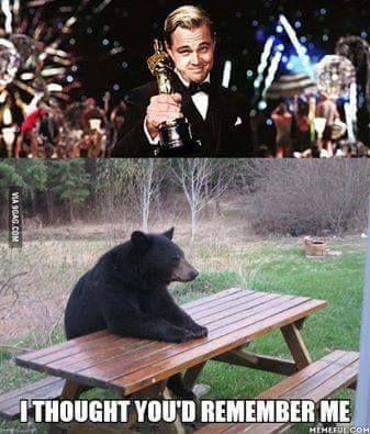 Gấu buồn Leo lắm = )))))))) #chúgấucôđơn #bịLeoruồngbỏ