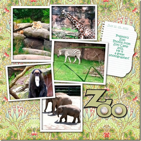 CD-Zoo Camp_edited-1 1000-Victoria