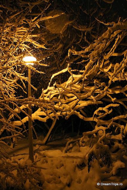 Noapte_de_iarna_1969.JPG