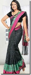 sadhika_venugopal_hot_in_saree_pic