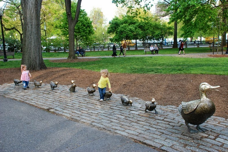 ducklings-boston-3