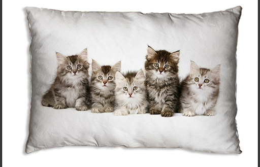 Alexandrite Kittens Cushion