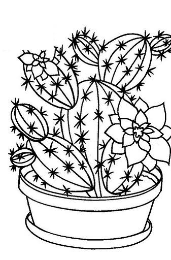 Dibujos De Cactus Para Colorear