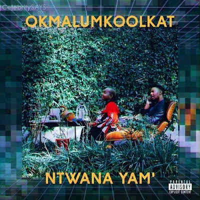 News Streaming is now available for NTWANAYAM by okmalumkoolkat on soundcloud