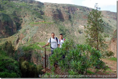 7186 Los Tiles-Firgas(Barranco Azuaje)