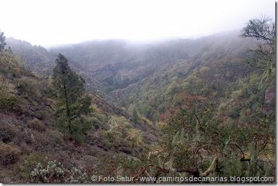 6824 Barranco Andén-Cueva Corcho(Barranco Andén)
