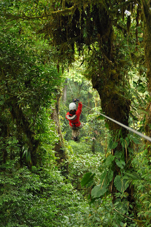 Atractii Costa Rica: Jungle Canopy