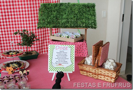 PIC NIC DO BRUNO 2012 (5)