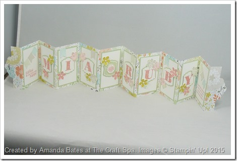 Scallop Tag Concertina Card,2014_03_Baby Girl Mia Ruby 021