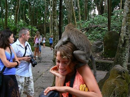 Obiective turistice Bali: Monkey Temple Ubud