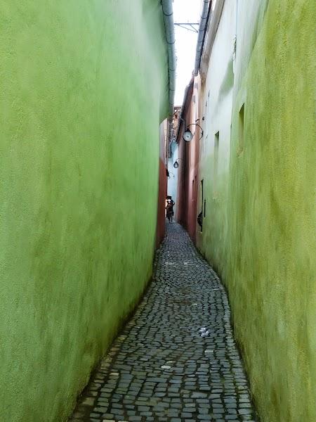 Obiective turistice Brasov: Strada Sforii