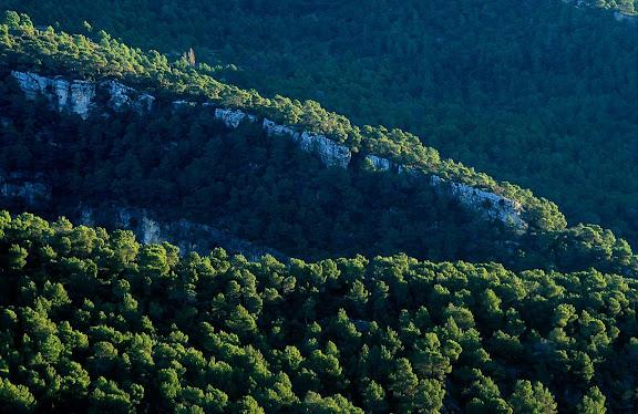 El serret dels Avencs, serra de Prades, Muntanyes de Prades, Montblanc, Conca de Barberà, Tarragona 2000