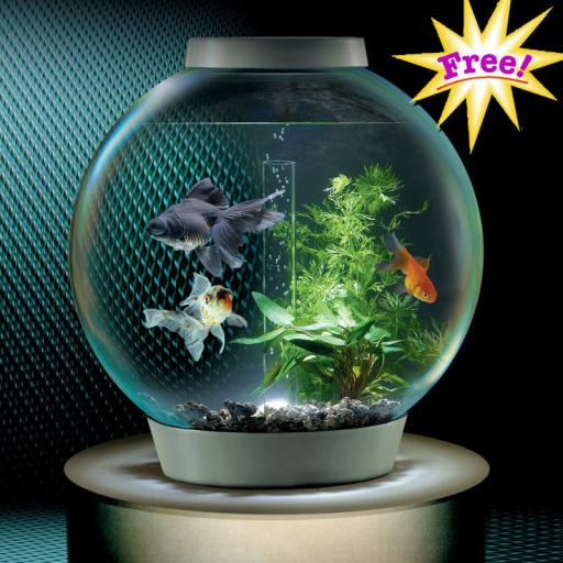 Aquarium LOGO-APP點子