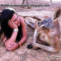 Naughty Girls like Kangaroo whatsapp image