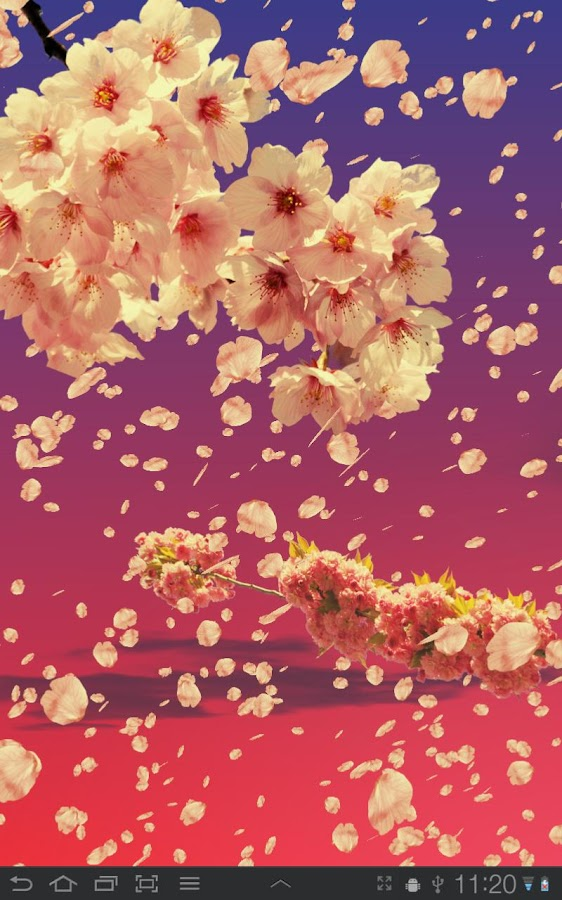 Sakura Live Wallpaper - screenshot