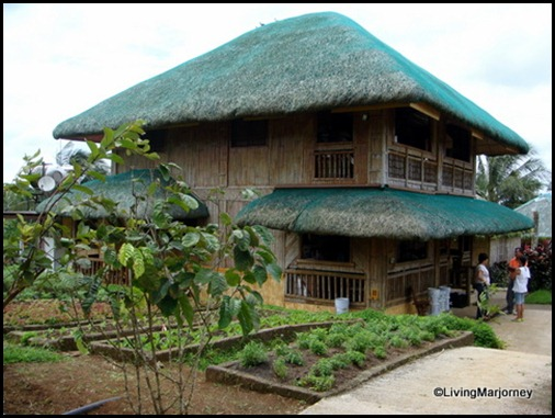 Costales Farm in Majayjay, Laguna (3)