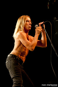 Iggy and the Stooges-11.jpg