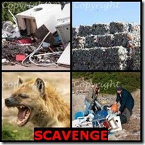 SCAVENGE- 4 Pics 1 Word Answers 3 Letters