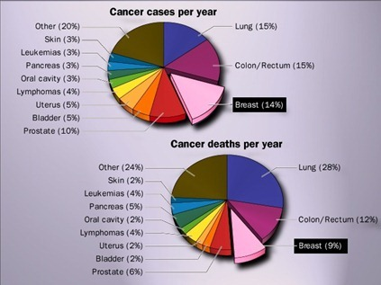 Cancer cases & death per year-breast