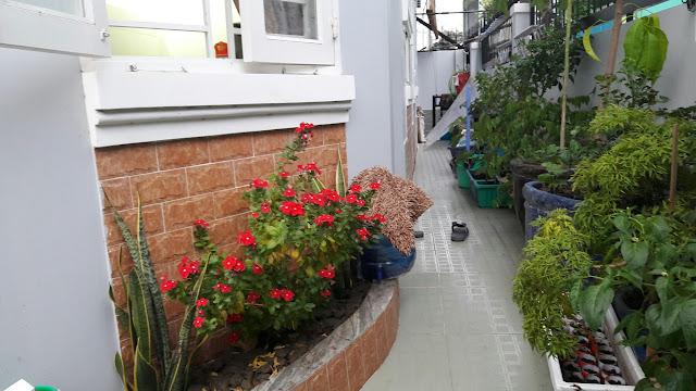 Bán nhà mặt tiền số 238 Lưu Hữu Phước, Phường 15, Quận 8, Tp Hồ Chí Minh 011