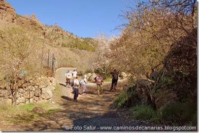 7438 La Goleta-La Candelilla(Ayacata)
