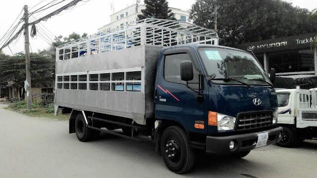 Xe chở lợn Hyundai HD99