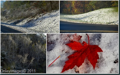 NH snow collage