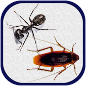 New Smash Ants 2015 Free Game