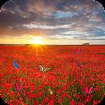 Sea Of Flowers v1.5