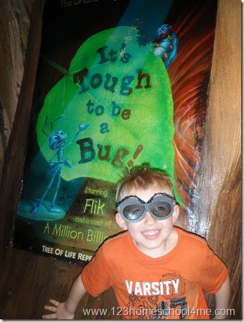 Animal Kingdom - It's a Bug;s Life 3D Show