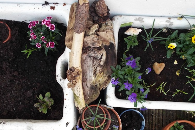 How to make a deadwood pile for the garden