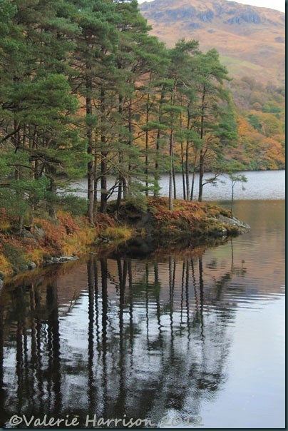 25-refections-loch-trool