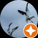 Familie Woudstravogel