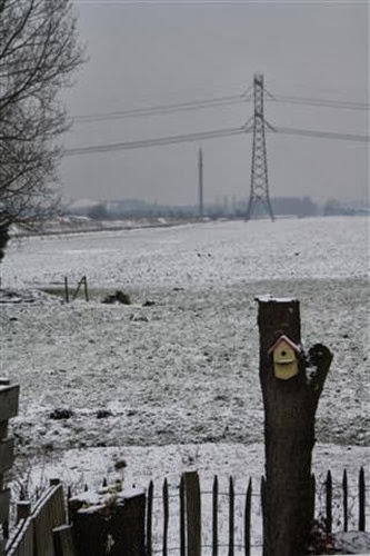 20090204 (Small)
