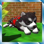 Cute Pocket Puppy 3D