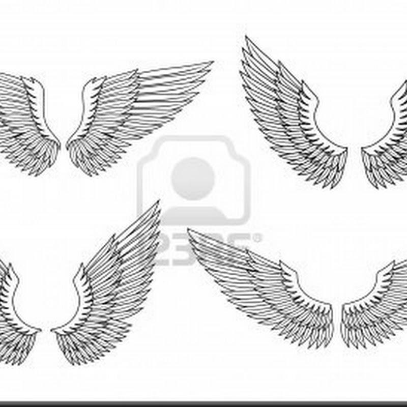 Como hacer alas de ángel o hada para disfraces