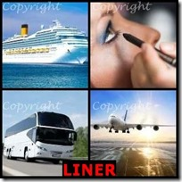 LINER- 4 Pics 1 Word Answers 3 Letters