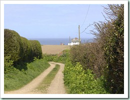weybourne-country-lane