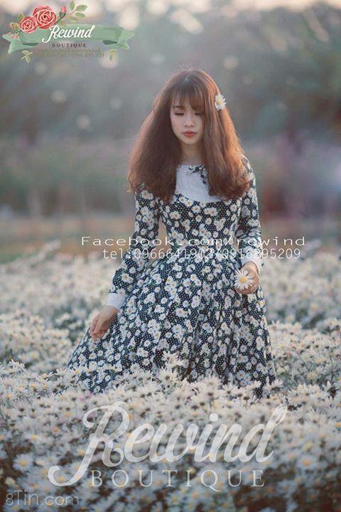 một buổi chiều se lạnh với nắng nhạt và hoa cúc hoạ