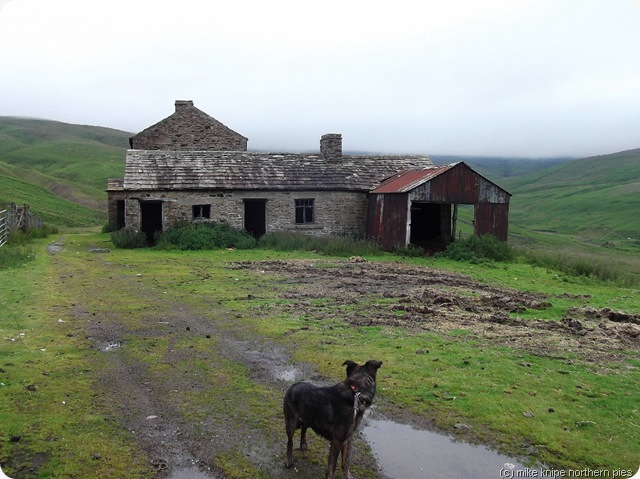 coldberry mine stables and shop