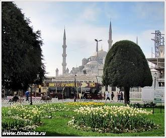 Голубая мечеть. Стамбул. Турция.