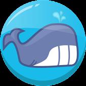 Aqua Zee