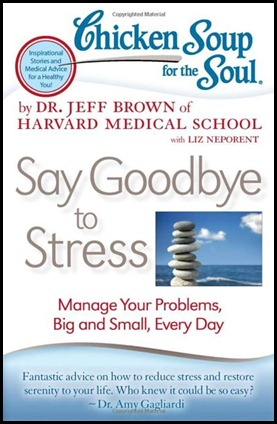 Chicken Soup Say Goodbye to Stress