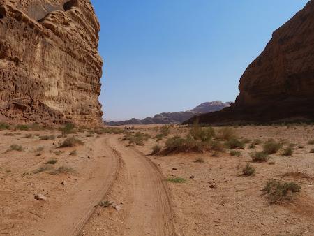 Trekking in Wadi Rum