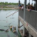 Тайланд 12.05.2012 6-01-12.JPG