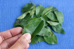 Curry leaves 2