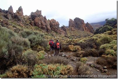 043 Cañadas del Teide