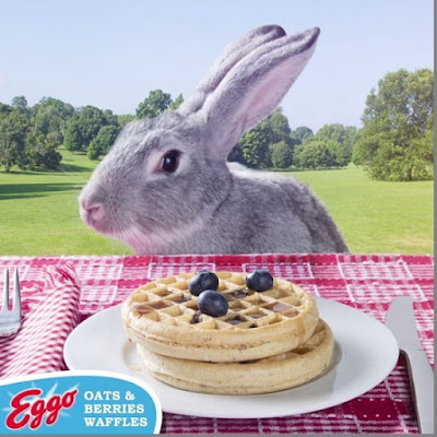 New Eggo Oats Berries Waffles Real berries Steelcut oats So delicious even